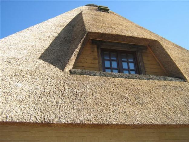 Пример крыши покрытой камышом
