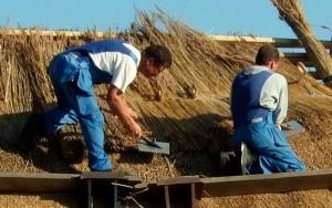 Работы по укладке снопов на основание крыши